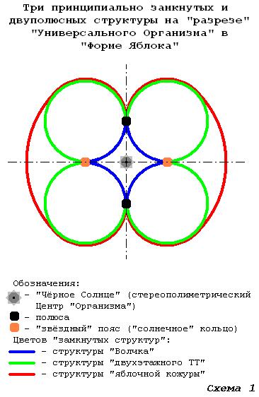 Форма Яблока как 5 мерный континуум и Лоно Плода